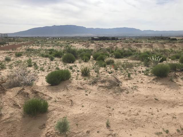 Lot 10 1504 5Th Street SE, Albuquerque, NM 87124 (MLS #965689) :: Campbell & Campbell Real Estate Services