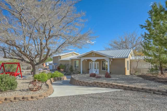 1567 W Ella Drive, Corrales, NM 87048 (MLS #965697) :: The Bigelow Team / Red Fox Realty