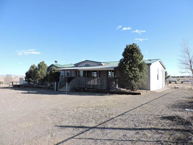 11 Silver Maple Avenue, Moriarty, NM 87035 (MLS #965744) :: The Buchman Group