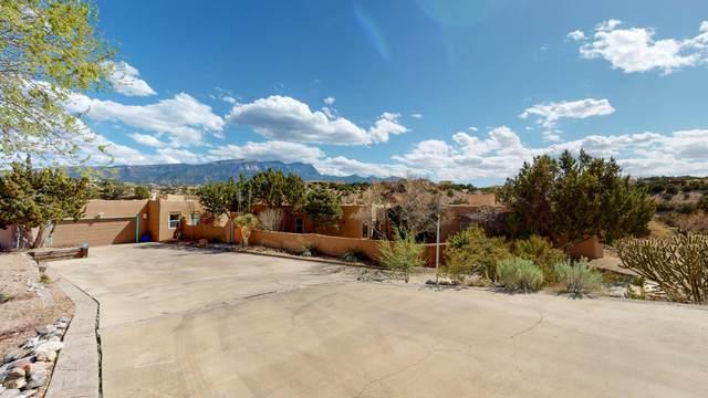 38 Camino Barranca, Placitas, NM 87043 (MLS #965855) :: Sandi Pressley Team