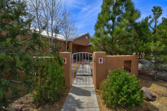 10 Bandelier Court, Sandia Park, NM 87047 (MLS #965865) :: Sandi Pressley Team