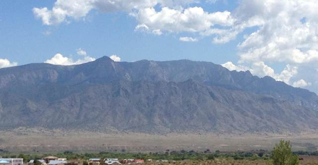3407 Fennegan Court NE, Rio Rancho, NM 87144 (MLS #965905) :: Sandi Pressley Team