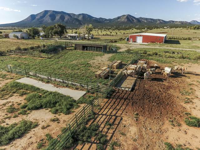 62 Moonbeam Ranch Road, Edgewood, NM 87015 (MLS #965910) :: Campbell & Campbell Real Estate Services