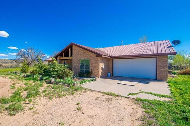 6 Vista Colinas, Los Lunas, NM 87031 (MLS #965981) :: Sandi Pressley Team
