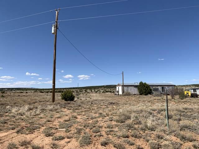 24 Tyler Loop, Moriarty, NM 87035 (MLS #966012) :: Berkshire Hathaway HomeServices Santa Fe Real Estate