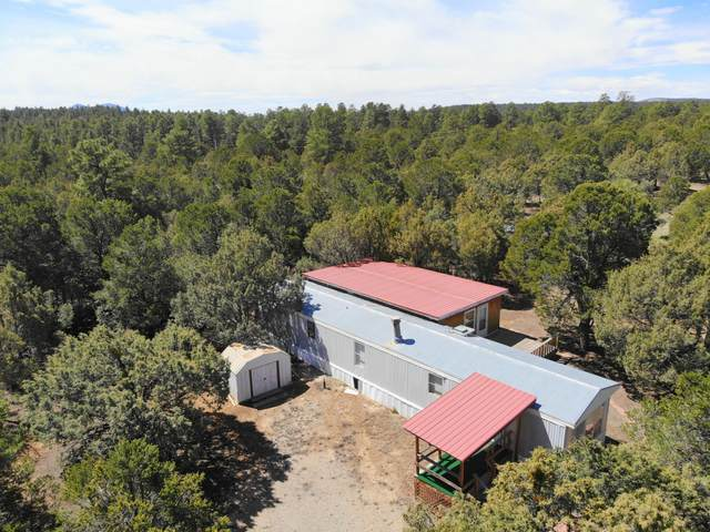 6 Hummingbird Lane, Tijeras, NM 87059 (MLS #966026) :: Sandi Pressley Team