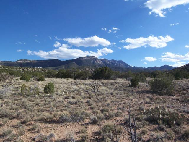 Rainbow Valley Road Tract E, Placitas, NM 87043 (MLS #966042) :: The Bigelow Team / Red Fox Realty