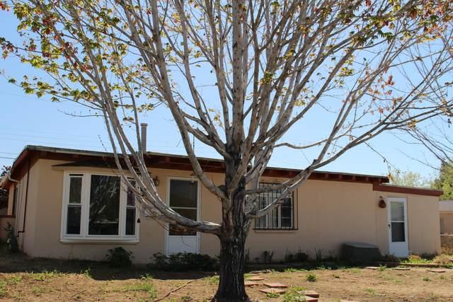 1328 General Somervell Street NE, Albuquerque, NM 87112 (MLS #966081) :: Sandi Pressley Team