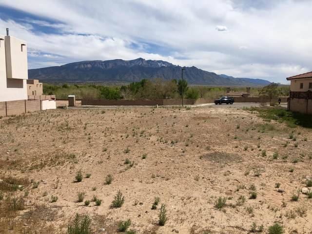 912 Nicholas Court, Bernalillo, NM 87004 (MLS #966630) :: Campbell & Campbell Real Estate Services