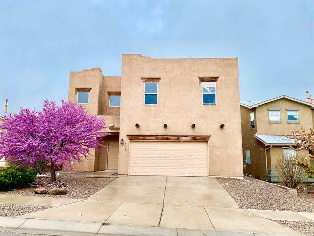 9315 Jameson Street NW, Albuquerque, NM 87114 (MLS #966638) :: The Bigelow Team / Red Fox Realty
