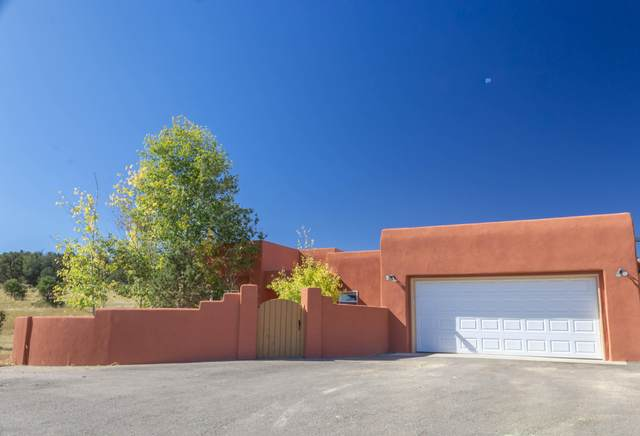 53 Las Colinas Road, Edgewood, NM 87015 (MLS #966709) :: Campbell & Campbell Real Estate Services