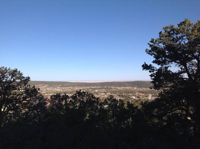 2-A Jack Rabbit Run, Tijeras, NM 87059 (MLS #966741) :: Keller Williams Realty