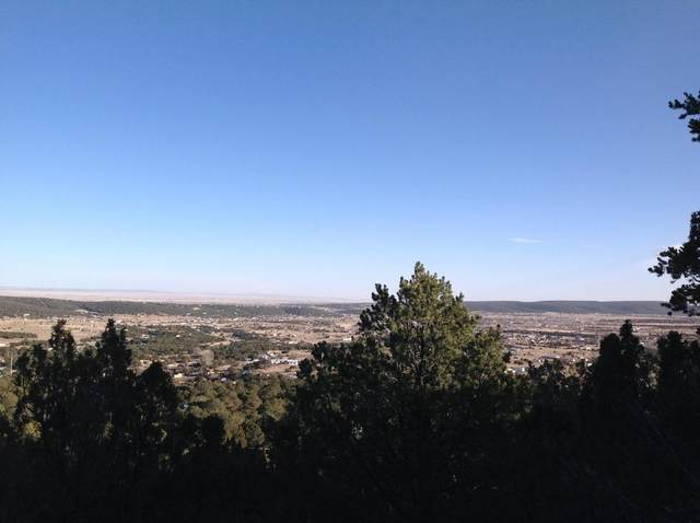 2-C Jack Rabbit Run, Tijeras, NM 87059 (MLS #966742) :: Berkshire Hathaway HomeServices Santa Fe Real Estate