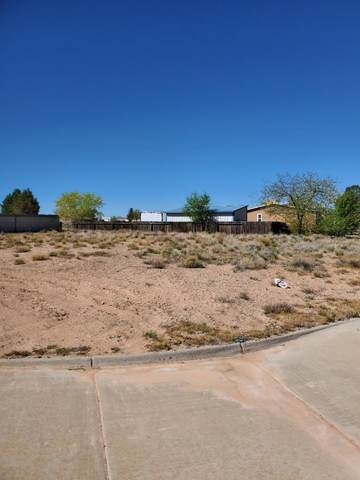 705 Desi Loop, Belen, NM 87002 (MLS #966748) :: Keller Williams Realty