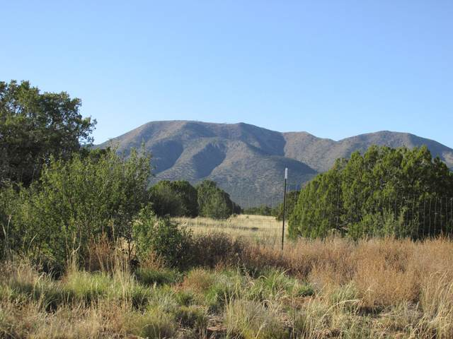 0 Drake, Edgewood, NM 87015 (MLS #966875) :: The Bigelow Team / Red Fox Realty