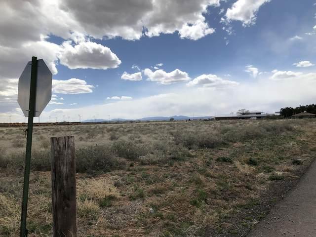 46 Calle De Los Ninos Avenue, Moriarty, NM 87035 (MLS #966877) :: Berkshire Hathaway HomeServices Santa Fe Real Estate
