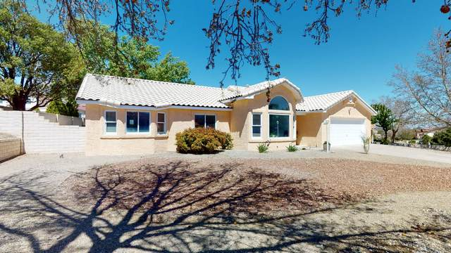 3087 Ashkirk Loop SE, Rio Rancho, NM 87124 (MLS #966899) :: Campbell & Campbell Real Estate Services