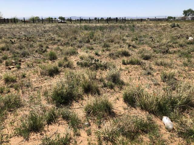 Tract 2 Mayo Loop, Los Lunas, NM 87031 (MLS #966952) :: The Bigelow Team / Red Fox Realty