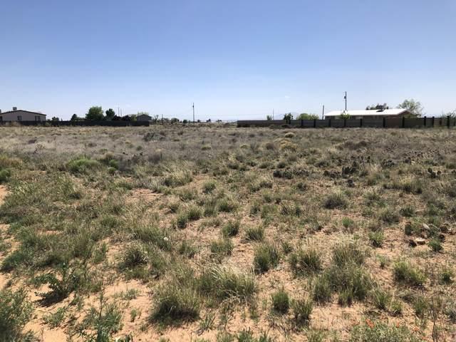 Tract 3 Mayo Loop, Los Lunas, NM 87031 (MLS #966953) :: The Buchman Group