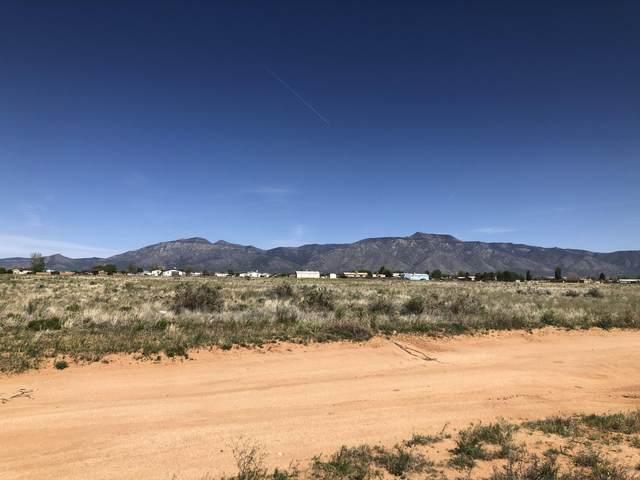 Tract 4 Mayo Loop, Laguna, NM 87026 (MLS #966954) :: The Buchman Group