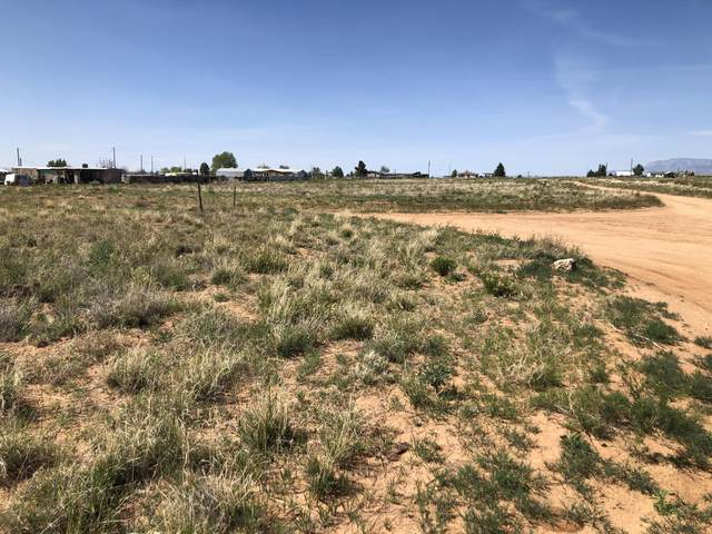 Mayo Loop, Los Lunas, NM 87031 (MLS #966957) :: The Bigelow Team / Red Fox Realty