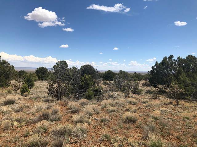 0 Stanley, Stanley, NM 87056 (MLS #967103) :: The Bigelow Team / Red Fox Realty