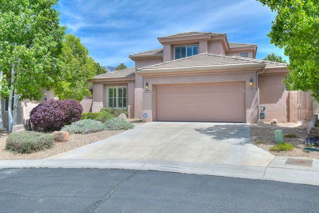5900 Purple Aster Lane NE, Albuquerque, NM 87111 (MLS #967228) :: Campbell & Campbell Real Estate Services