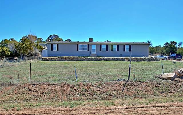 8 John Drive, Edgewood, NM 87015 (MLS #967229) :: The Buchman Group
