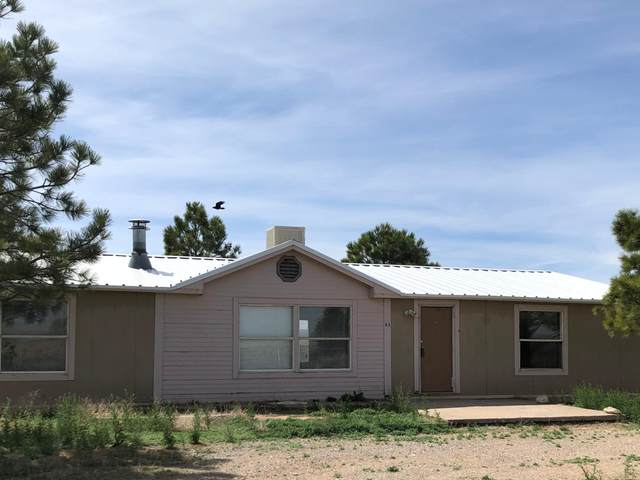93 B King Farm Road, Moriarty, NM 87035 (MLS #967270) :: Campbell & Campbell Real Estate Services