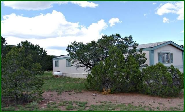 98 Tanglewood Circle, Datil, NM 87821 (MLS #967286) :: The Buchman Group