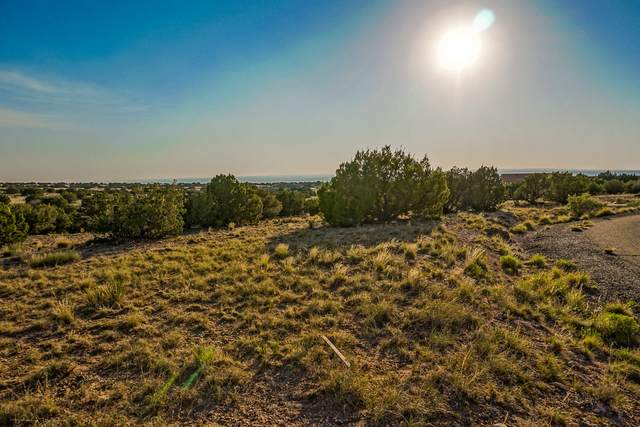 23 Apache Mesa Road, Placitas, NM 87043 (MLS #967310) :: Campbell & Campbell Real Estate Services