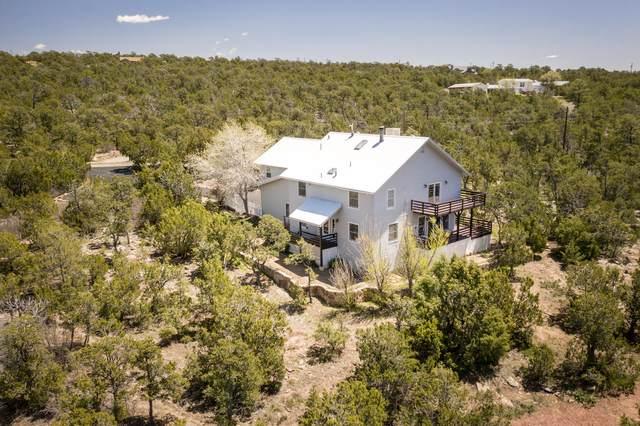 58 Sangre De Cristo, Cedar Crest, NM 87008 (MLS #967436) :: Campbell & Campbell Real Estate Services