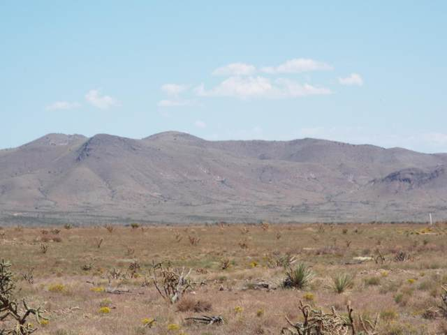 Lot 21 Willow Springs Ranch, San Antonio, NM 87832 (MLS #967491) :: The Buchman Group