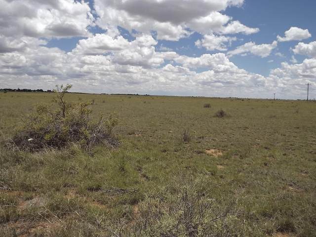 W Martinez Road, Moriarty, NM 87035 (MLS #967725) :: The Bigelow Team / Red Fox Realty