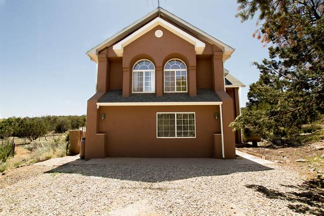 20 Ryan Road, Edgewood, NM 87015 (MLS #967757) :: Campbell & Campbell Real Estate Services
