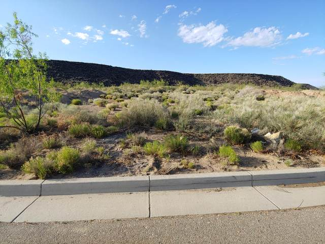 8501 Mesa Rain Road NW, Albuquerque, NM 87120 (MLS #967808) :: The Buchman Group