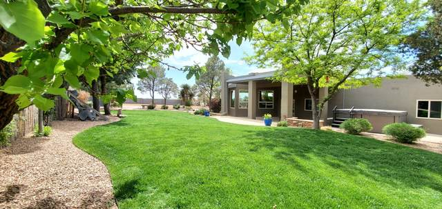 12301 San Antonio Drive NE, Albuquerque, NM 87122 (MLS #967936) :: The Buchman Group