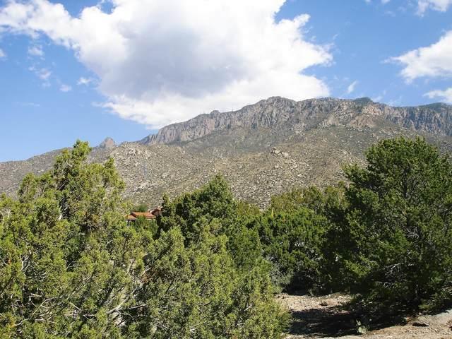 381 Big Horn Ridge Place NE, Albuquerque, NM 87122 (MLS #967950) :: Keller Williams Realty