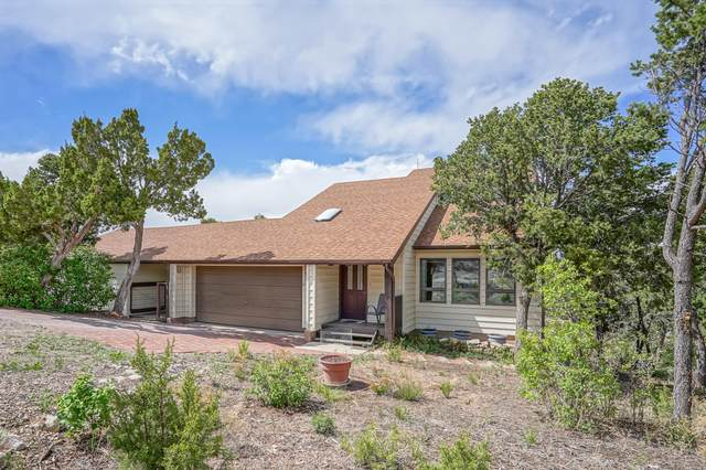 4 Pinon Circle, Sandia Park, NM 87047 (MLS #968034) :: Campbell & Campbell Real Estate Services
