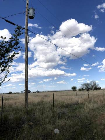 Lexie Lane, Moriarty, NM 87035 (MLS #968038) :: Campbell & Campbell Real Estate Services
