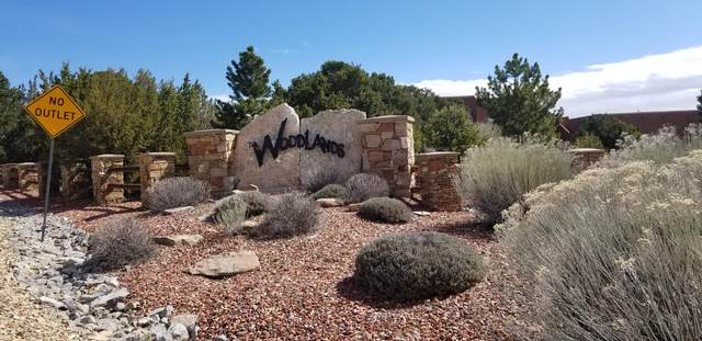 43 Woodlands Drive, Tijeras, NM 87059 (MLS #968043) :: Berkshire Hathaway HomeServices Santa Fe Real Estate
