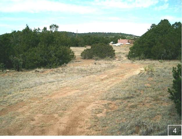 25 Eastgate Road, Tijeras, NM 87059 (MLS #968198) :: Campbell & Campbell Real Estate Services