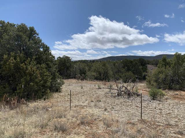 23 Eastgate Road, Tijeras, NM 87059 (MLS #968199) :: Campbell & Campbell Real Estate Services