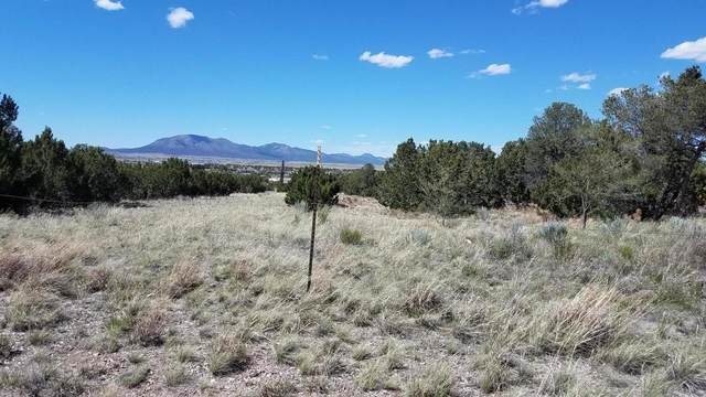 1979 Old Us 66, Edgewood, NM 87015 (MLS #968250) :: Campbell & Campbell Real Estate Services