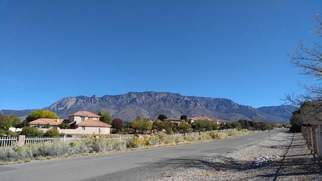 9908 San Bernardino Avenue NE, Albuquerque, NM 87122 (MLS #968344) :: Campbell & Campbell Real Estate Services