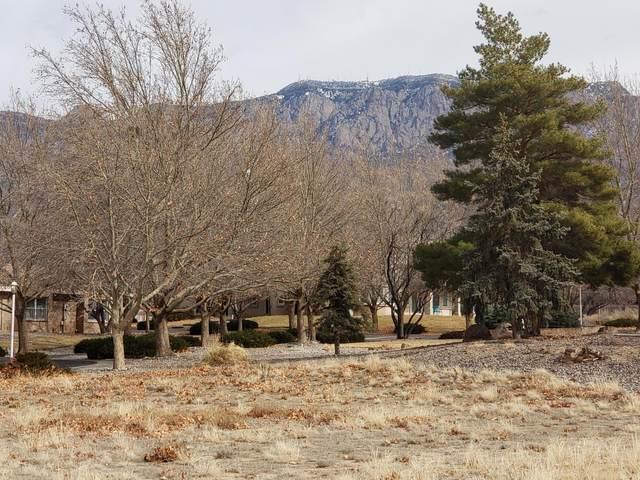 10004 San Bernardino Avenue NE, Albuquerque, NM 87122 (MLS #968347) :: The Buchman Group