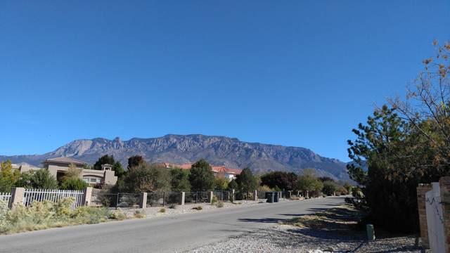 10104 San Bernardino Drive NE, Albuquerque, NM 87122 (MLS #968352) :: The Buchman Group
