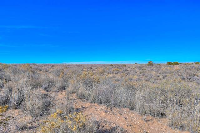 1st Street SW, Rio Rancho, NM 87124 (MLS #968432) :: Campbell & Campbell Real Estate Services