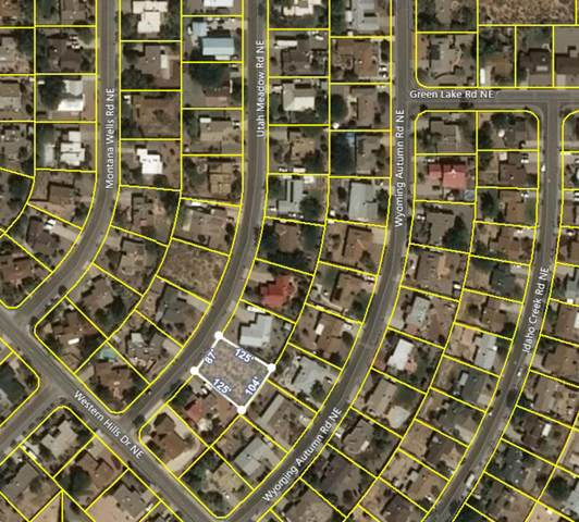 95 Utah Meadow Road NE, Rio Rancho, NM 87124 (MLS #968456) :: Campbell & Campbell Real Estate Services