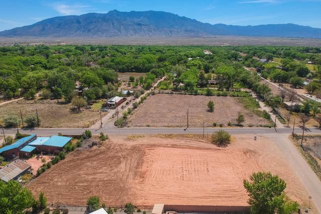 100 Stella Lane, Corrales, NM 87048 (MLS #968483) :: Campbell & Campbell Real Estate Services
